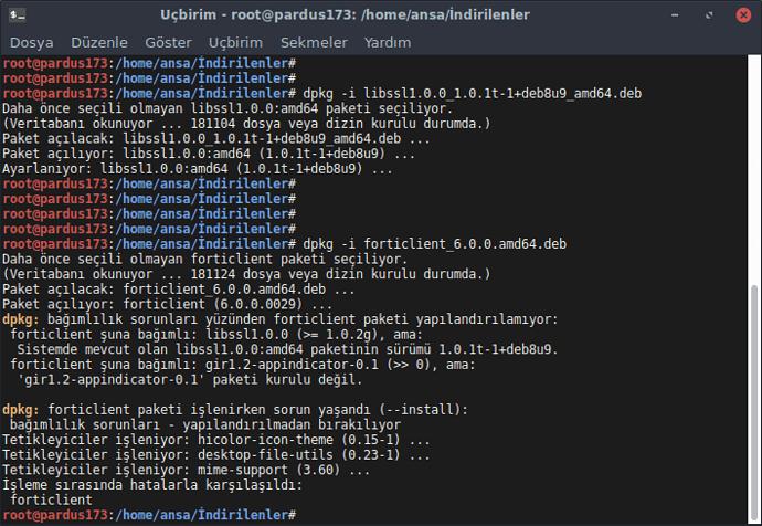 ucbirim_forticlient6_hata