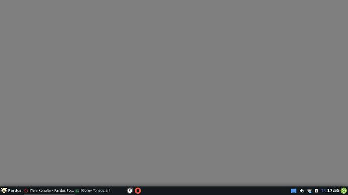 Ekran görüntüsü_2020-04-20_17-55-12