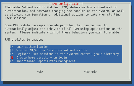 pam-auth-update